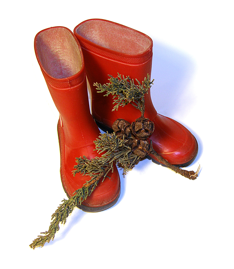 """elfin boots"" ~ sld"
