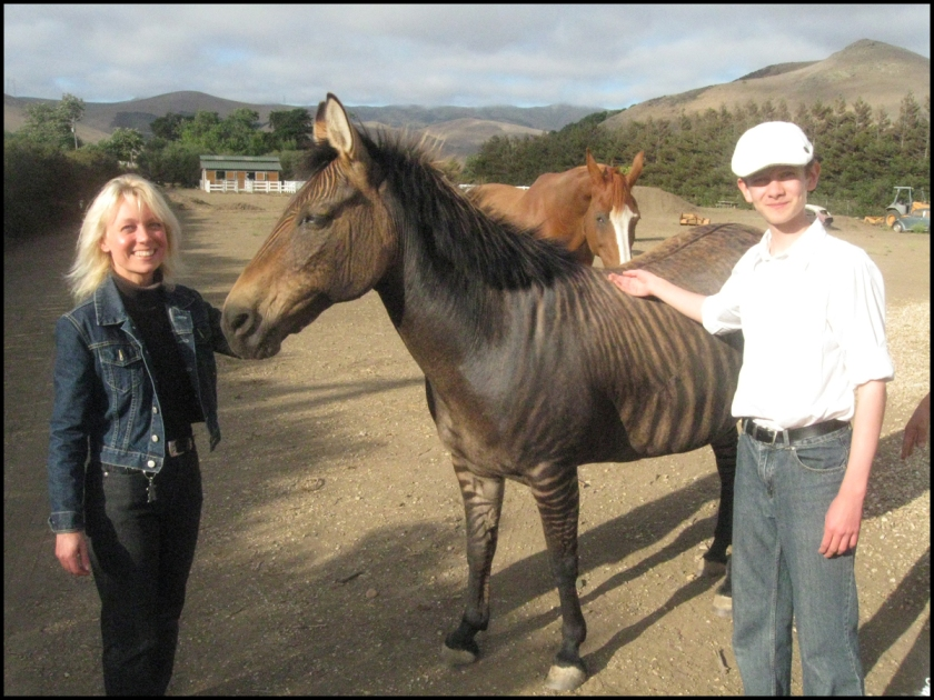 S and J with zebra-horse kd 1200